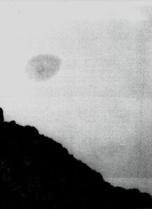 amoeba2