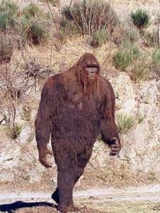 Bigfoot (Janssens-Casteels)