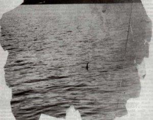 Loch Ness : surgeon's picture original