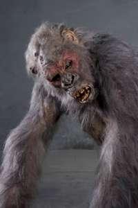 Grey Gorilla costume from Congo