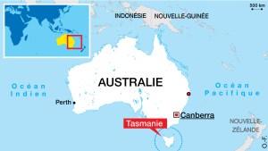 Carte d'Australie (Thymichtys politus)