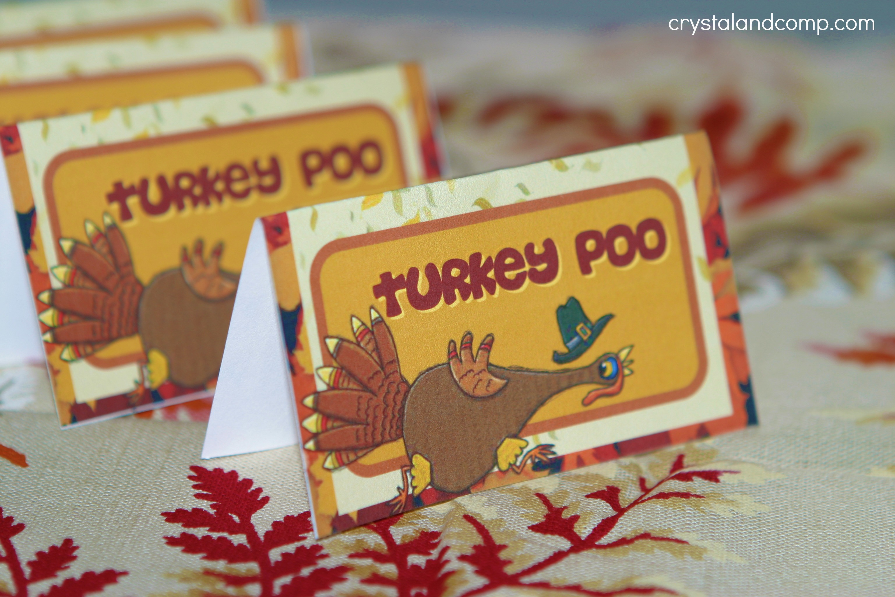 Craft Ideas For Thanksgiving Turkey Poo Printable