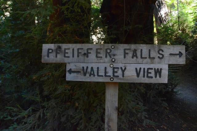 Pfeiffer-Big-Sur-State-Park