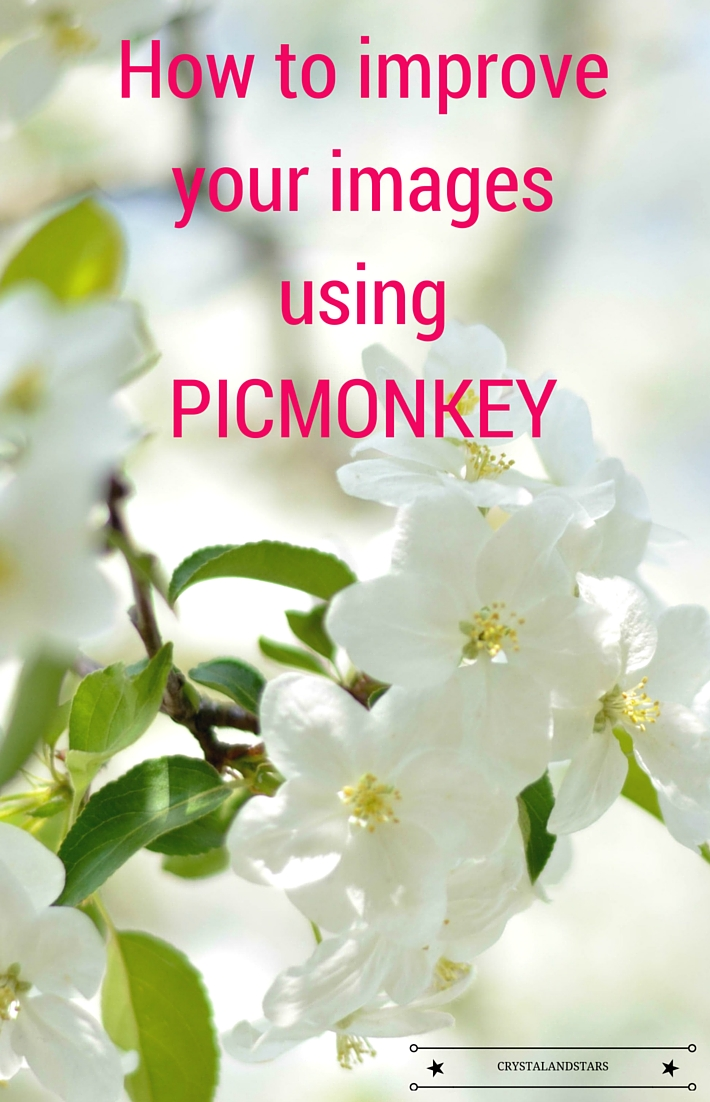 HOW TO IMPROVE YOUR IMAGES USING PICMONKEY