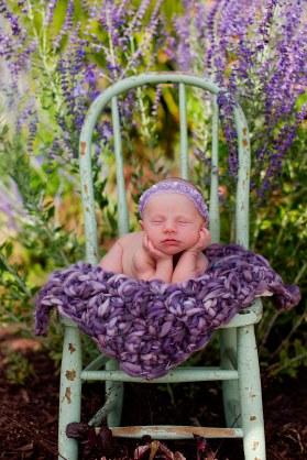 free photo blanket crochet pattern