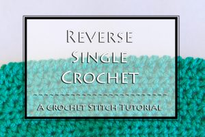 Reverse Single Crochet Stitch Tutorial by Crystalized Designs