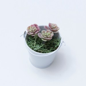 Mini Succulent Magnet Tutorial by Crystalized Designs