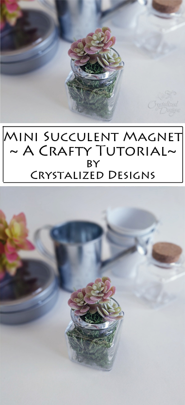 Mini Succulent Magnet by Crystalized Designs