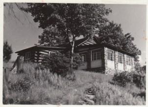 White Pine - 1958
