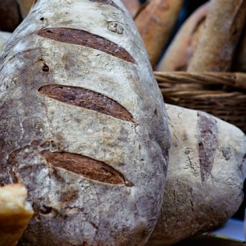 Bread Bread's Bread