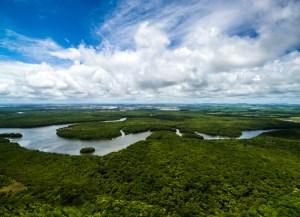 Amazon Rainforest in Brazil, South America - Source: Frazao, Gustavo. Amazon Rainforest in Brazil, South America. Digital Image. Shutterstock, [Date Published Unknown]
