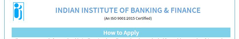 IIBF certificate