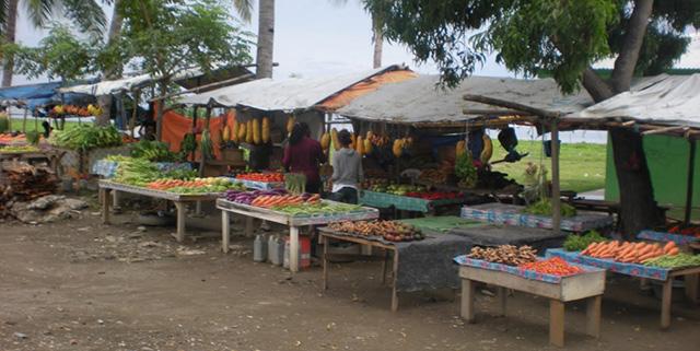 Timor Leste food crop 0x0 - Timor-Leste