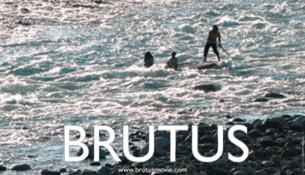 Brutus image