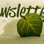 CRCS Newsletter August 2018