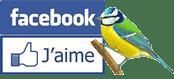 CSFL sur Face Book