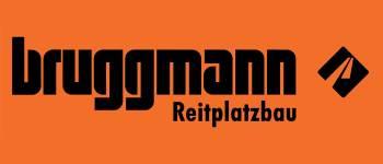 https://www.reitplatzbau.ch/