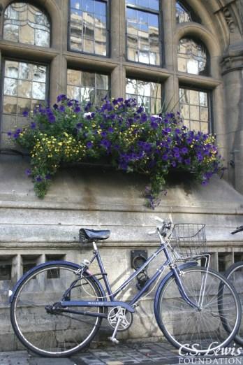 O Bike - IMG_7808ABAH-Crop