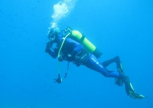 robin-plongeur.jpg