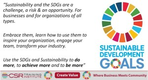 Integrate Sustainable Development Goals into Your Business Strategy