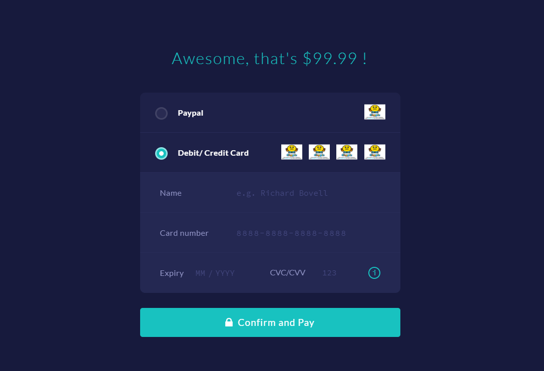 CSS Credit Card Checkout Form Example