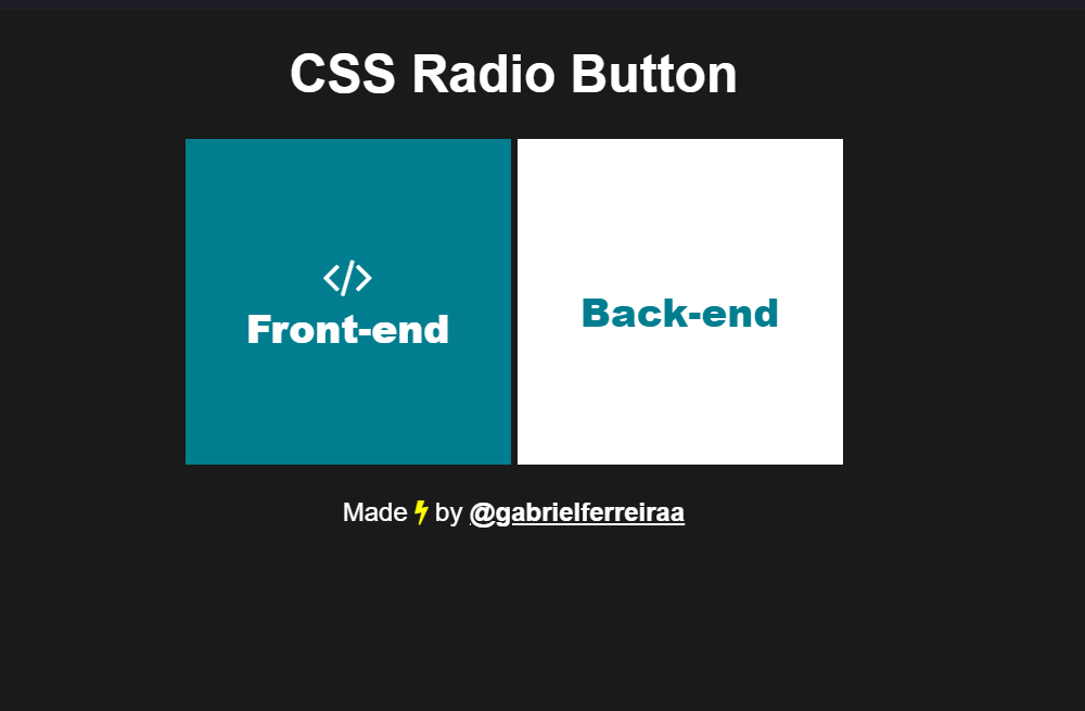 Radio Button Big Square CSS Only Code