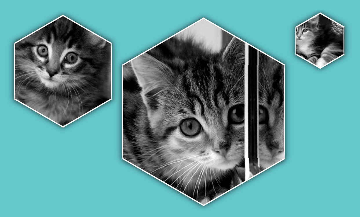 CSS Hexagon Image with Shadow And Border