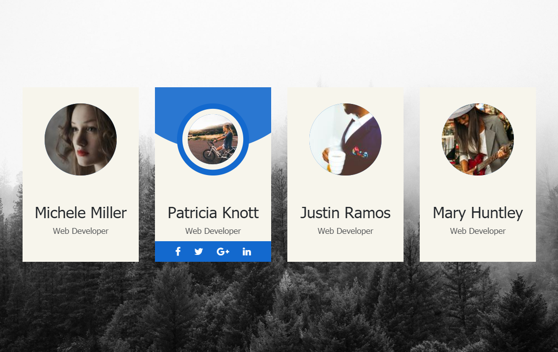 CSS Profile Card UI Design Hover Effect