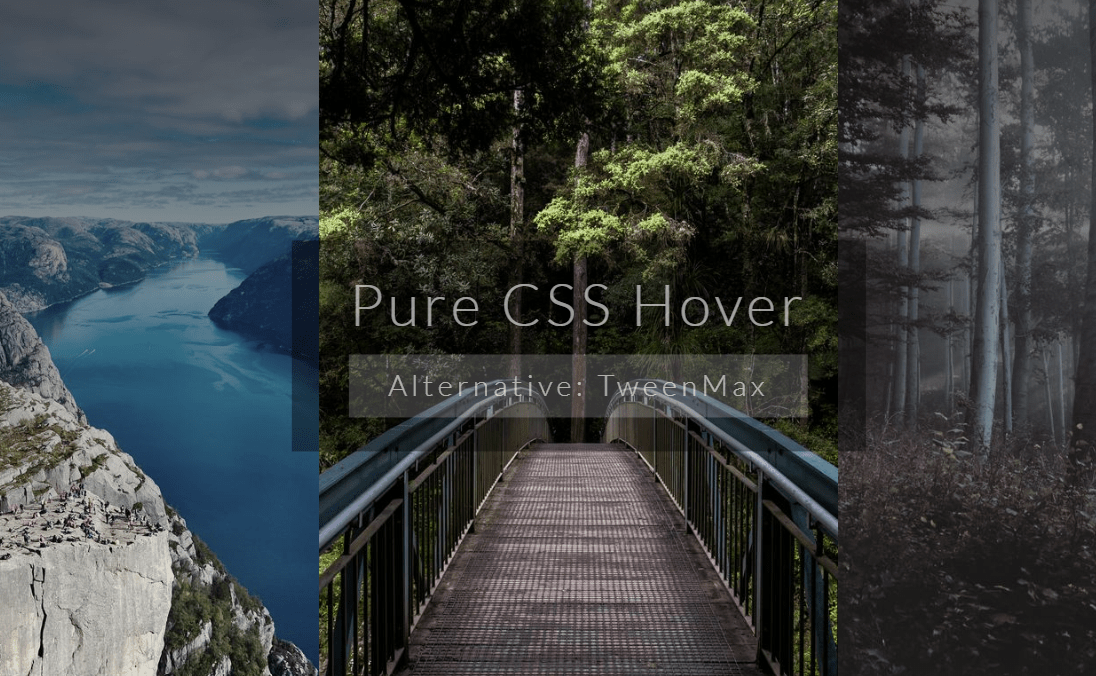 CSS Website Panel Design With Hover Effect