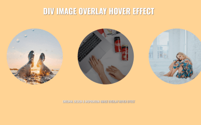 CSS Overlay Div on Image Code Snippet