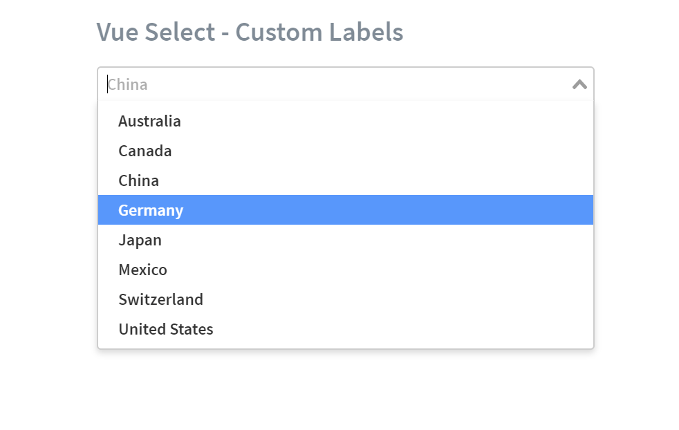 Vue Custom Labels Select