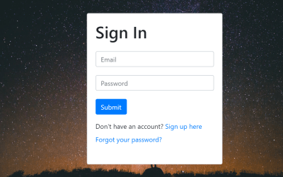 Vue JS Login Form Example
