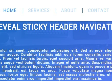 Auto-Reveal Sticky Header Navigation with Pure JavaScript and CSS