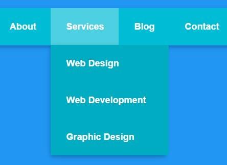 Simple Clean Pure CSS3 Dropdown Menu