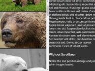 Scrollbear