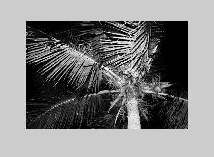 Medium-like Image Zoom In Pure JavaScript – zoom.js