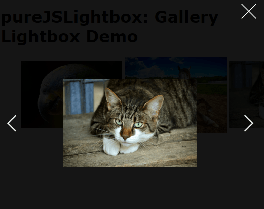Easy Gallery Lightbox In Pure JavaScript – pureJSLightbox