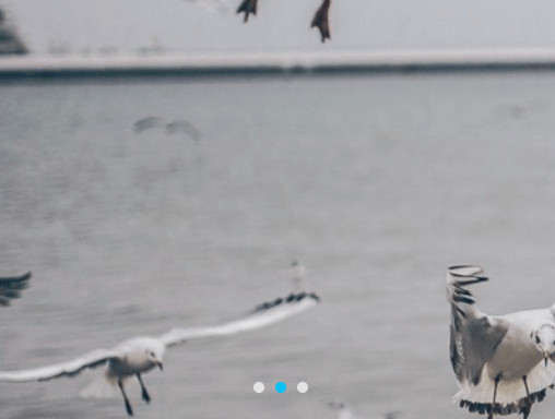 Mobile-friendly Photo Slider In Pure JavaScript – gallery.js