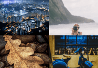 Responsive Fading Image Grid With Lazy Load