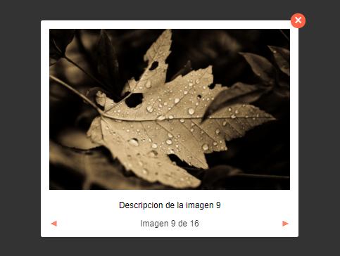 Minimal Lightbox Gallery In Pure JavaScript