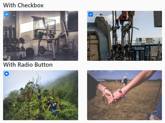 Image Selection With Checkbox Or Radio Input – Bootstrap Image Checkbox