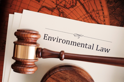 Image result for ENVIRONMENTAL LAWS