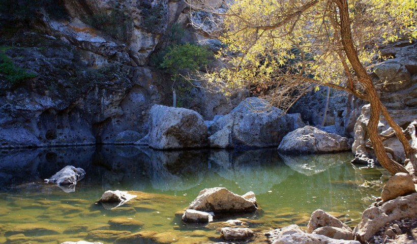 Malibu Creek Rock Pool, one site sampled in Harmon et al. (2018). (Flickr: Tony Hoffarth)