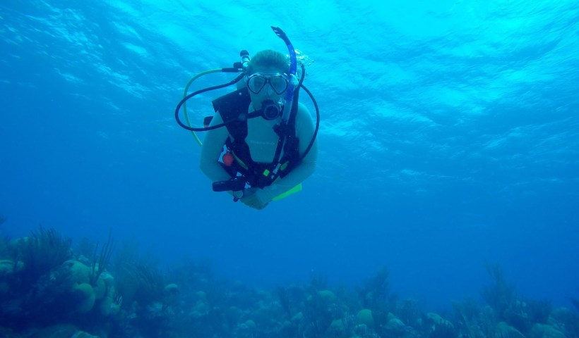 Danielle Becker, diving (AAUS website)