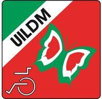 Progetto PLUS, UILDM apre le selezioni l'inserimento lavorativo delle persone con disabilità