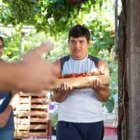 Campagna solidale: quando il lavoro favorisce l'inclusione sociale