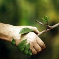 L'energia delle parole: un contest per immaginare un futuro sostenibile