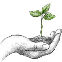 Al via il corso di educazione ambientale