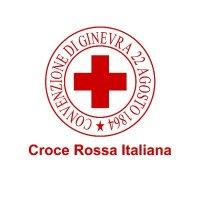 Croce Rossa Italiana, il Ministero del Lavoro e delle Politiche Sociali si esprime sulla natura giuridica dell'Associazione e dei suoi Comitati