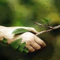 Concorso per le scuole sullo sviluppo sostenibile